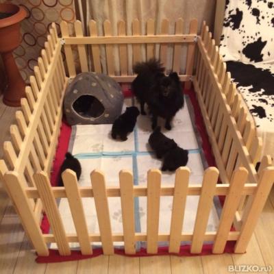 Вольер для собаки своими руками домашний